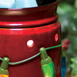 Scentsy Warmer & Scent of the Month | November 2012 | Save 10%