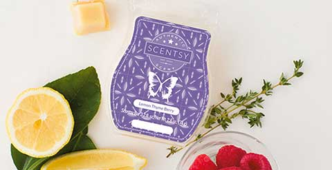 Scentsy Leads Fragrance Trends