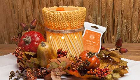 Scentsy-Warmer-of-the-Month-October-2014