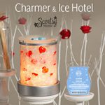 Amazing Scentsy Wickless Candles in January 2015
