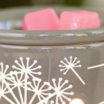 Mary Gregory Shares Candle Warmer of the Month