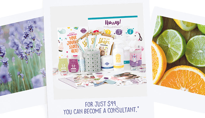 Scentsy Consultant Start Up Kit