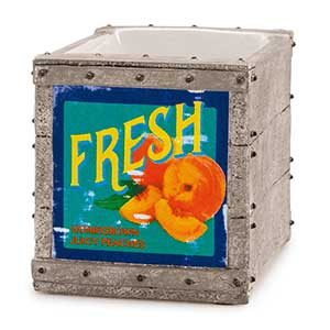 Scentsy Fruit Crate Candle Warmer