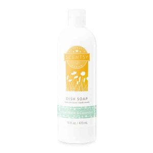 Aloe Water & Cucumber Dish Soap by Scentsy