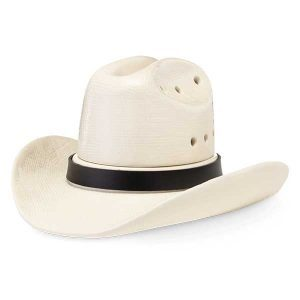 Cowboy Hat Scentsy Element Warmer